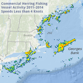 Herring Vessel Activity Less than 4 Knots