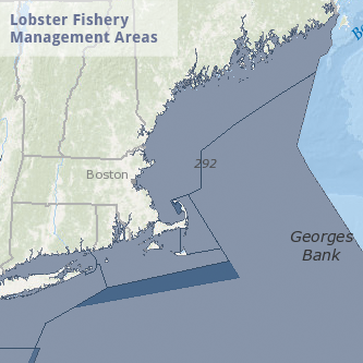 Lobster Fishery Management Areas Map