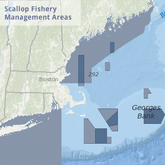 Scallop Fishery Management Areas