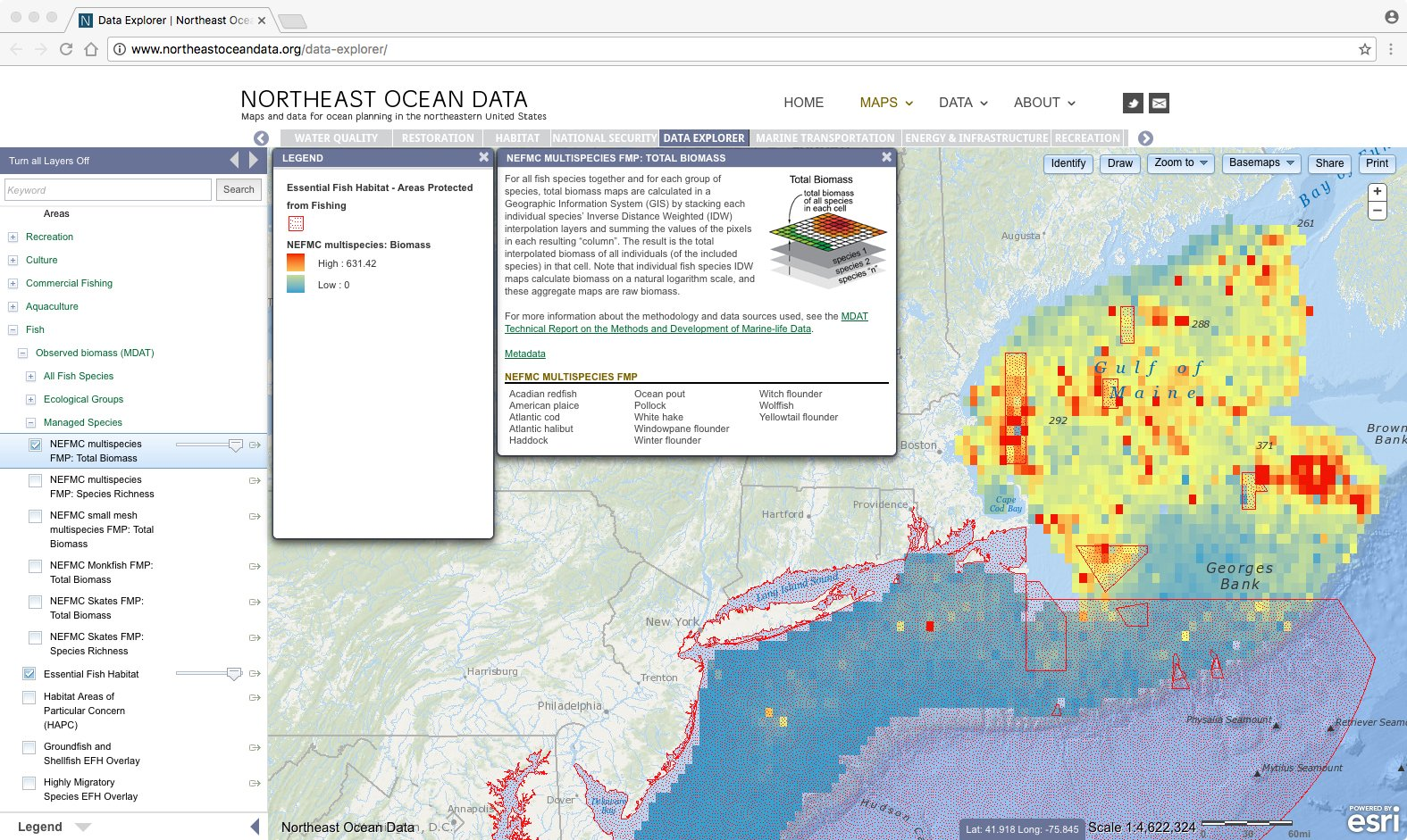 Screenshot: Designated Essential Fish Habitat areas mapped with total biomass of fish species managed under the Northeast Multispecies Fishery Management Plan
