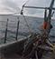 Northeast Ocean Data Portal Facilitates Establishment of First Shellfish Farm in Atlantic Federal Waters