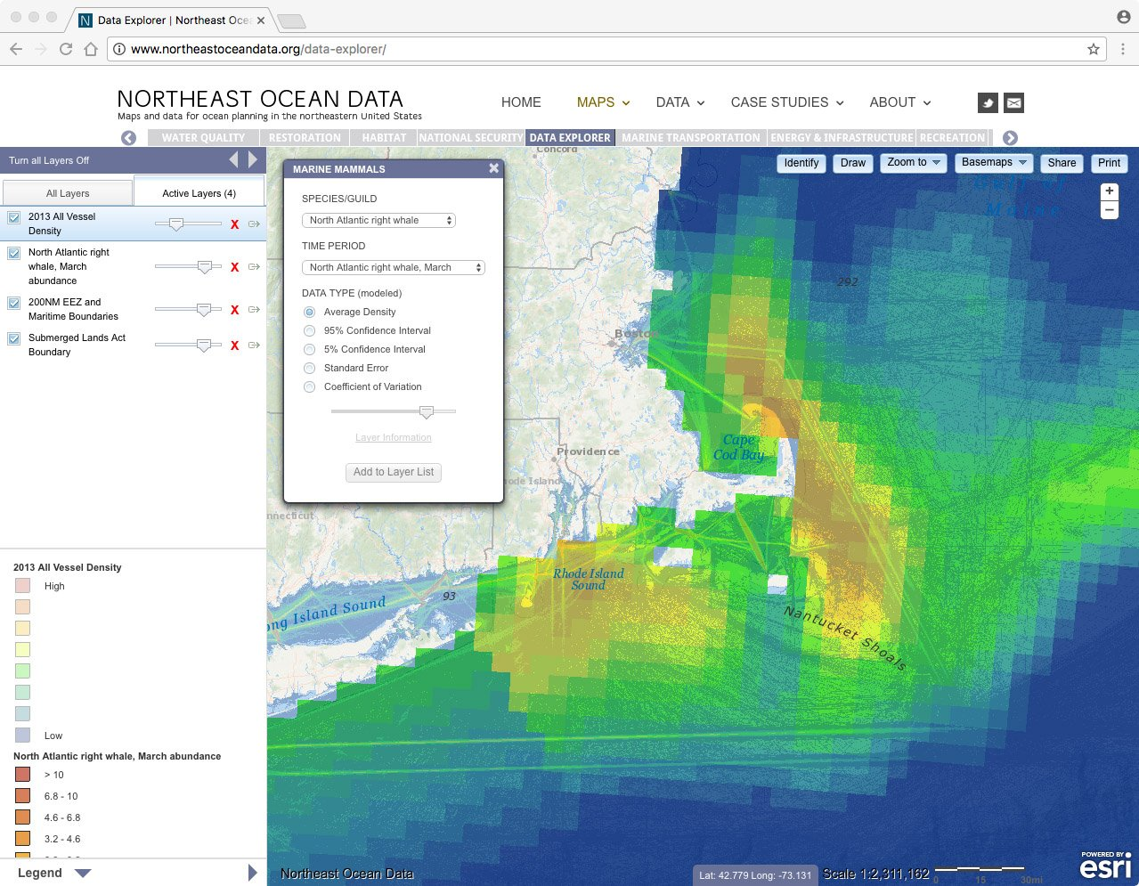 Screenshot of North Atlantic right whale abundance in March (colored squares) overlaid with all vessel traffic (2013)
