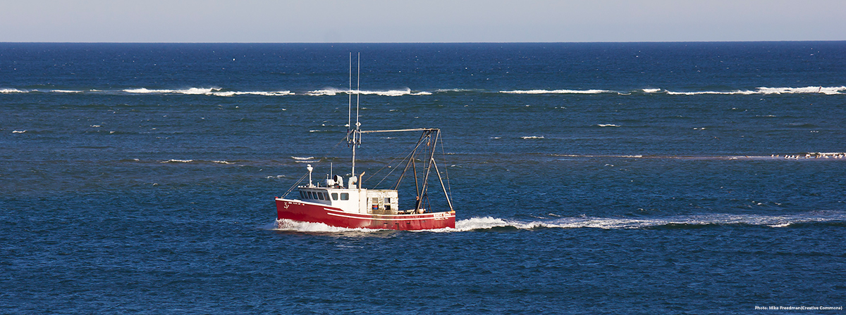 Fishing vessel returning to Chatham, Massachusetts. Credit: Mike Freedman (Creative Commons)