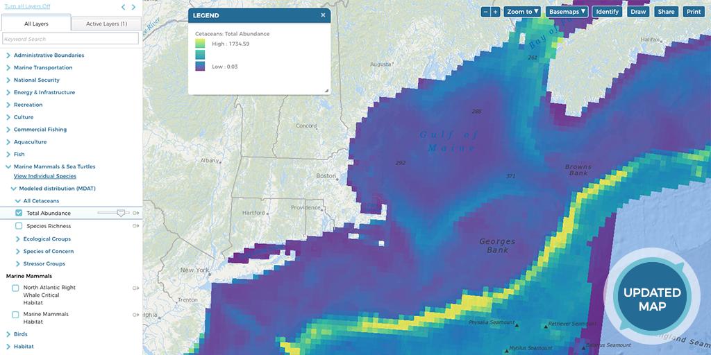 Screenshot of All Cetaceans Total Abundance Map