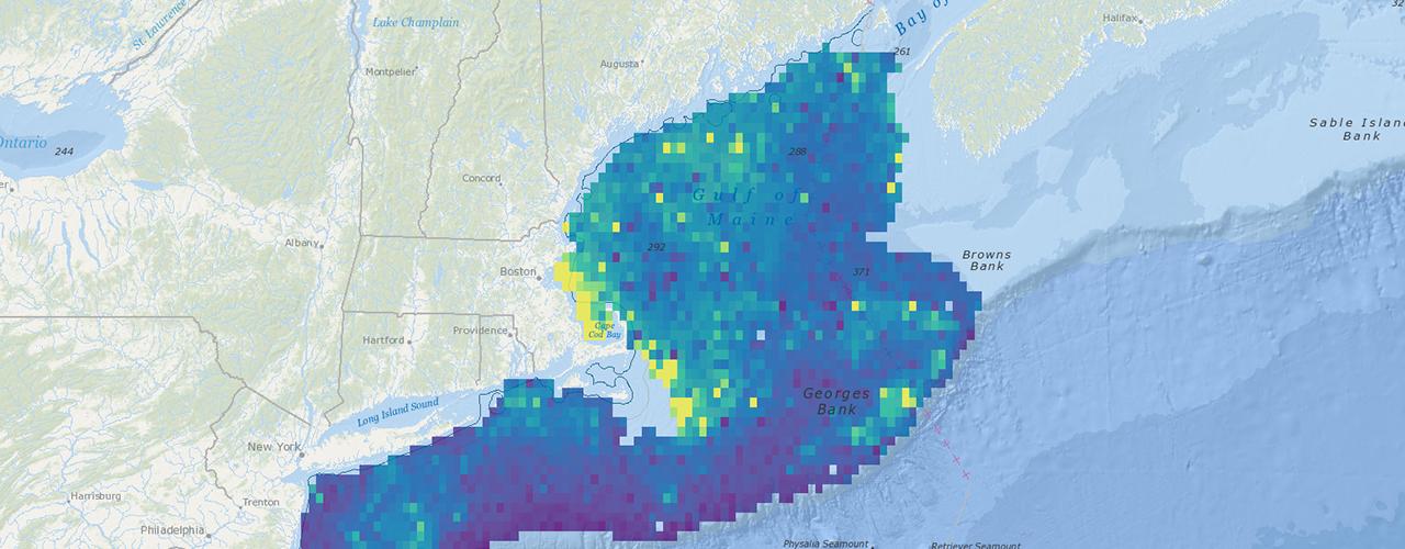Webinar Mapping Marine Life Northeast Ocean Data Portal - Map-of-us-atlantic-coast