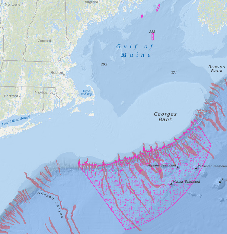 Map of the NEFMC Omnibus Deep-Sea Coral Amendment areas with a new layer of global deep-sea canyons