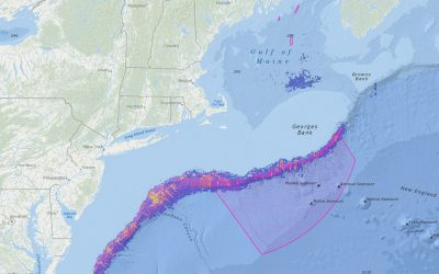 NEFMC Omnibus Deep-Sea Coral Amendment Areas with Deep-Sea Coral Habitat Suitability Model