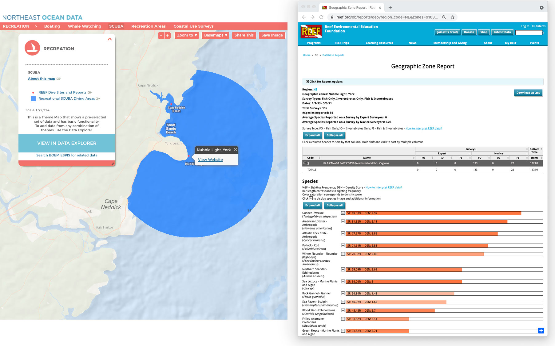 Recreation theme map showing Recreational SCUBA Diving Areas and REEF Dive Sites and Reports. By clicking on a REEF Dive Site, users can click a link to view a summary of volunteer surveys conducted at that location.