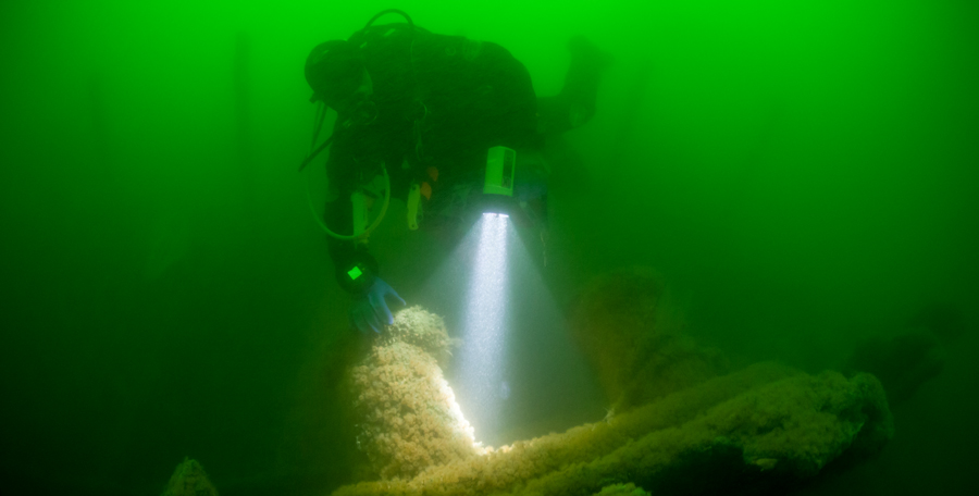 Recreational scuba diver at a wreck near Cape Cod. (Photo credit: Ethan Daniels/Shutterstock)